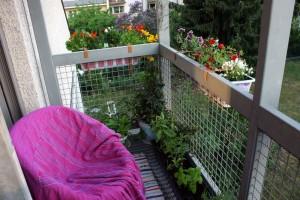 balkon-pflanzen-korbsessel