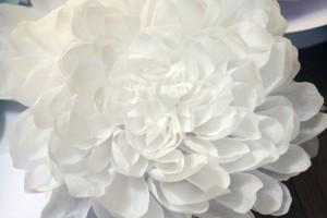 papierblume-dahlie-diy