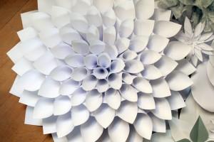 diy-grosse-papierdahlie